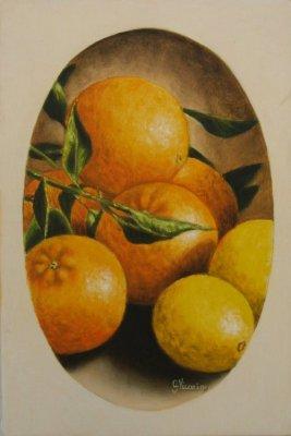 Arance e limoni 20x30 2008.jpg