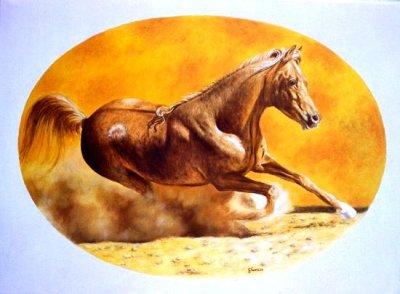 Cavallo al sole 80x60 2005.jpg