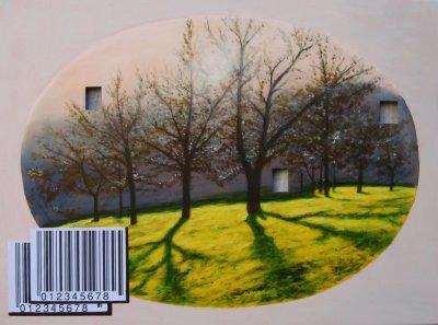 Codice a barre 1 acrilico 80x60 buchi 2011.jpg