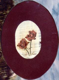 Rose 1 papiro 1982.JPG