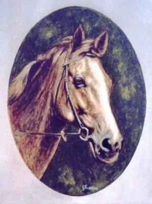 Testa di cavallo 30x40 2005.jpg